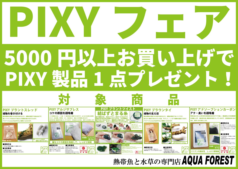 【新宿店】PIXYフェア開催中!!5000円以上の買い物でプレゼント有