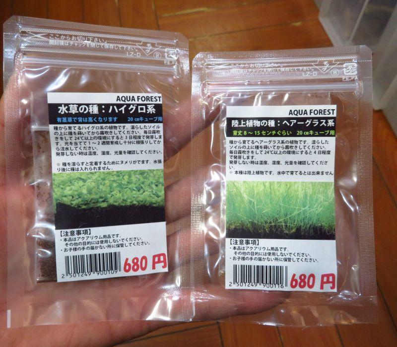 【新宿店】植物の種発売!