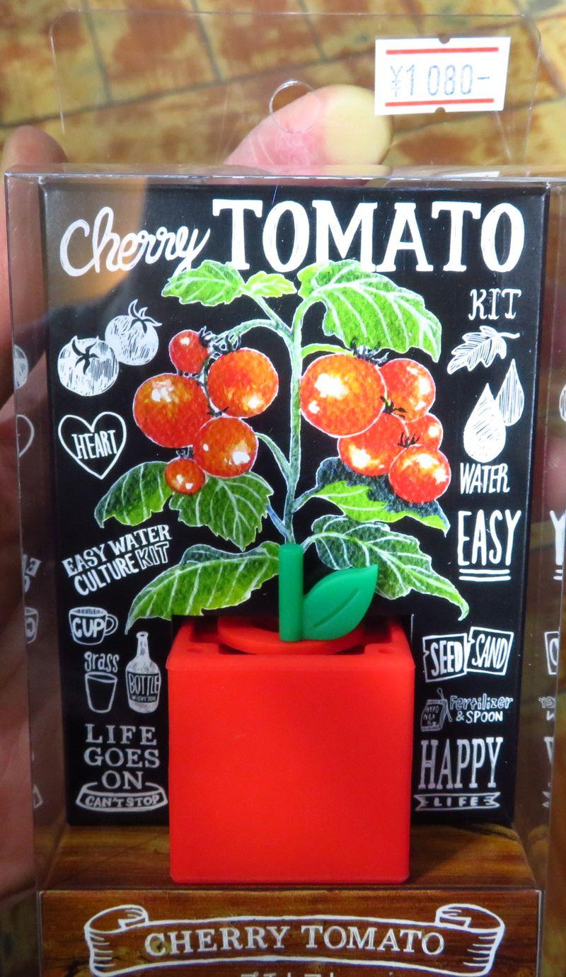 【新宿店】水耕栽培アイテム ポットランド「トマト」入荷しました