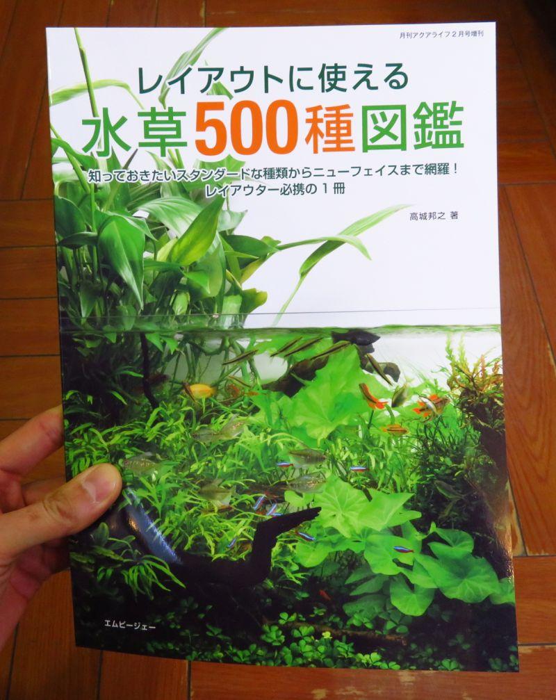 【新宿店】水草500種図鑑発売!