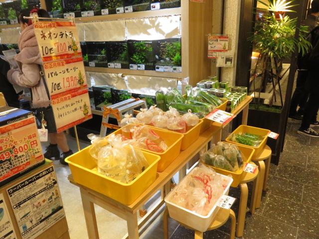 【ソラマチ店】福袋販売中です!!