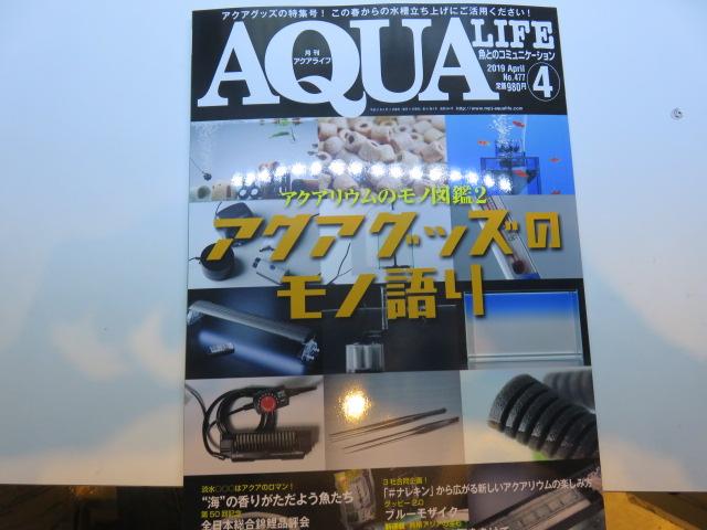 【新宿店・ソラマチ店】アクアライフ最新刊が入荷しております。