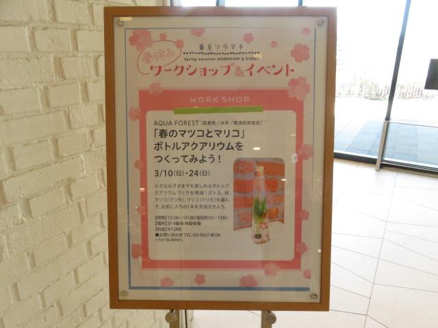 【ソラマチ店】春のワークショップ!