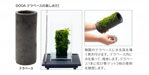 【新宿店】ADA テラベース入荷&メーカー欠品のお知らせ