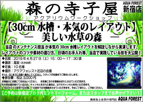 【新宿店】2019年4月27日(土)森の寺子屋30cm水槽水草レイアウト実演を開催します!!