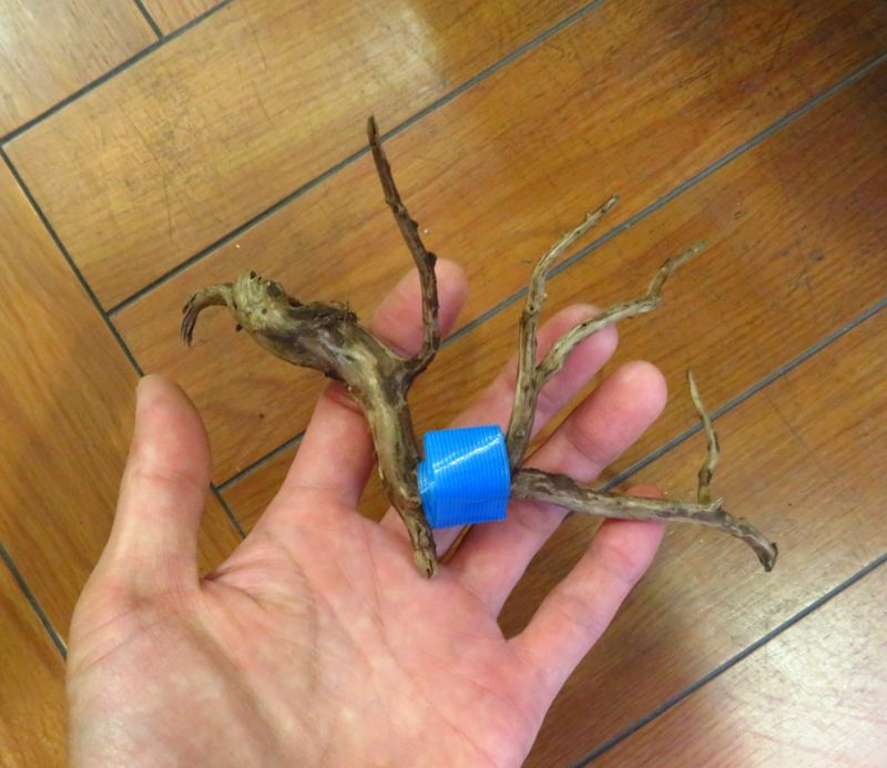 【新宿店】アク抜き流木が入荷しました。