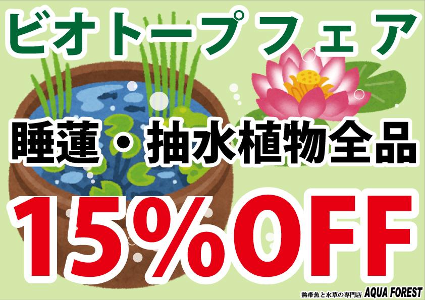 【新宿店】5月24日よりビオトープフェアを開催いたします♪