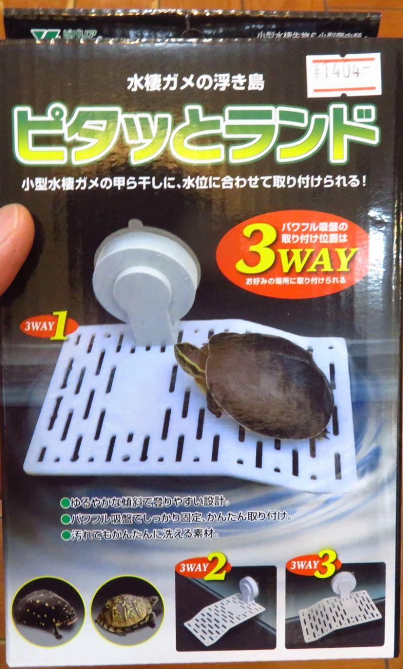 【新宿店】カメの浮島 ピタッとランド発売!