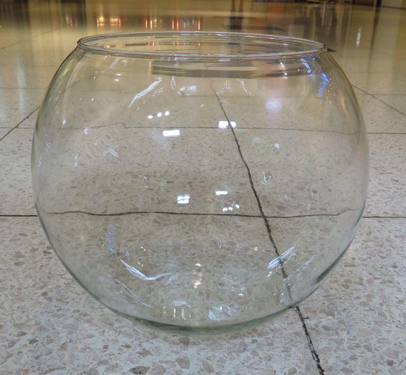 【新宿店】ボトルアクアリウム用の容器ご紹介