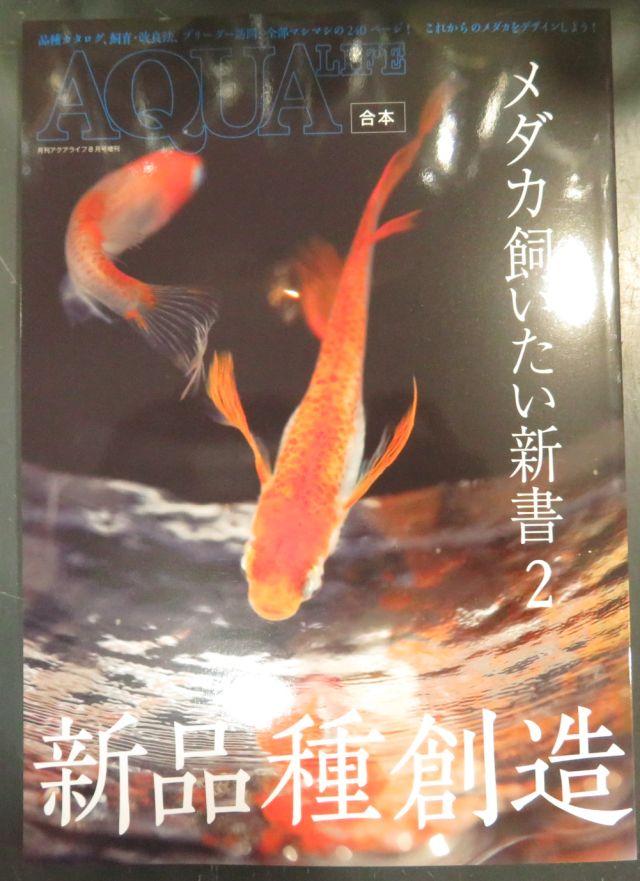 【新宿店】書籍メダカ飼いたい新書2、ベタのすべて発売!
