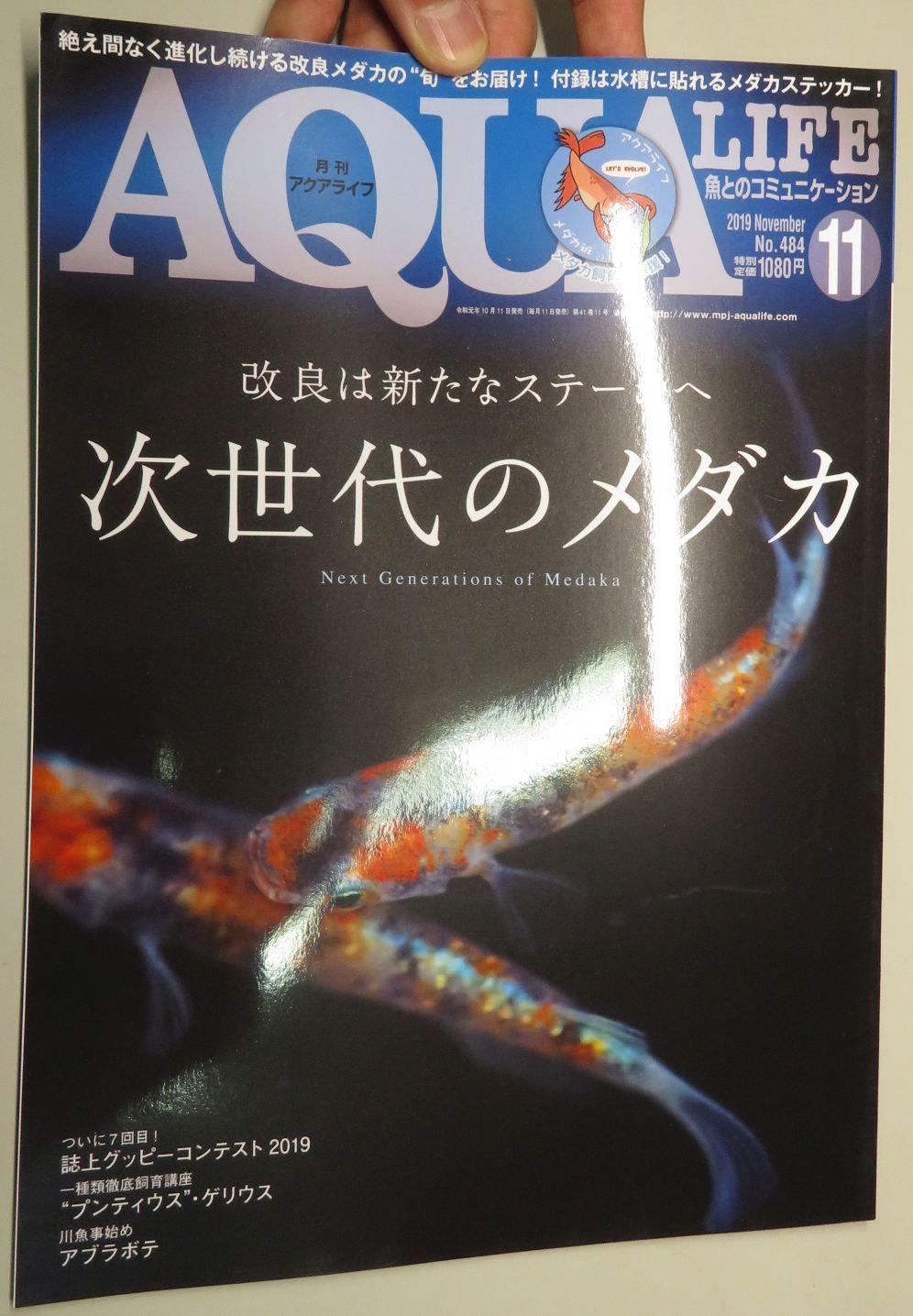 【新宿店】月刊誌アクアライフ、アクジャーナル入荷しました