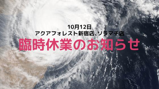 【新宿店、ソラマチ店】10月12日臨時休業のお知らせ