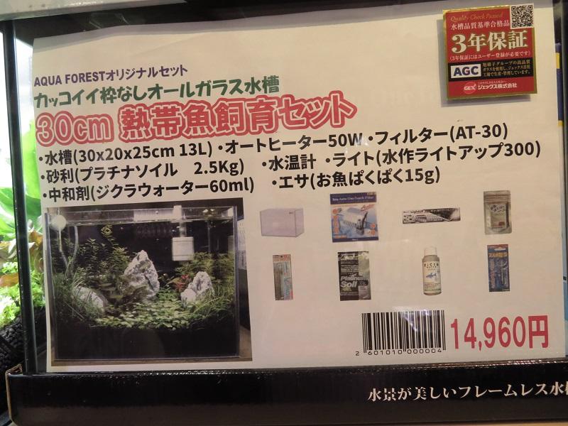 【新宿店】30cm水槽立ち上げました