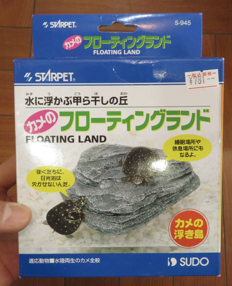 【新宿店】カメの浮島のご紹介