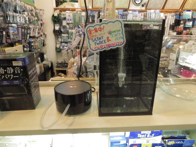 【新宿店】静かなエアーポンプ&細かいエアストーン展示中です