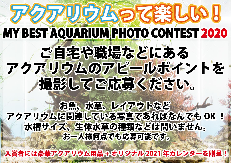 9月末締め切り!!「アクアリウムって楽しい!MY BEST AQUARIUM PHOTO CONTEST2020」