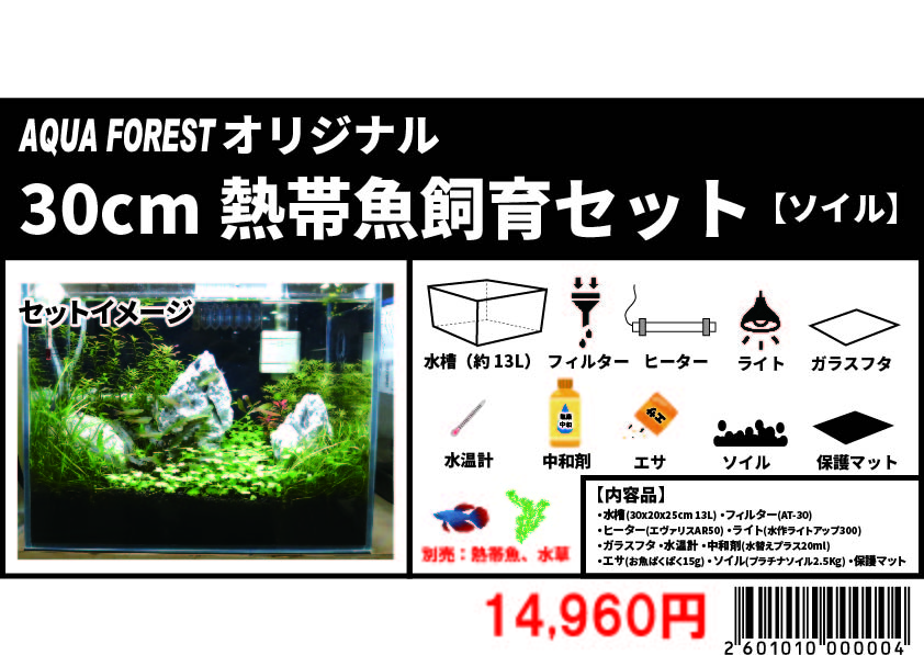 【新宿店】オリジナル30センチ熱帯魚セット