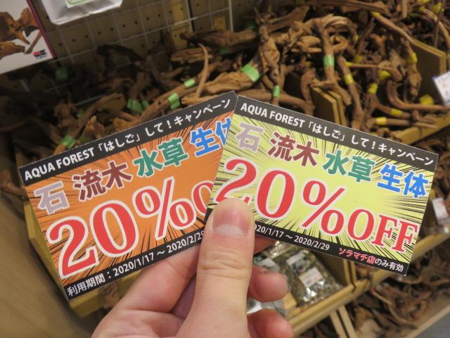 【ソラマチ店】小さめ素材って素晴らしい、チケット使ってますか?