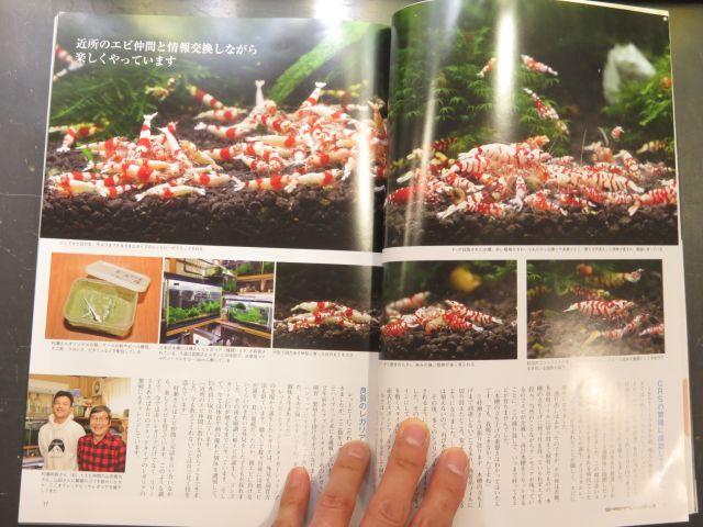 【新宿店】年一回発行 シュリンプクラブNo.9発売