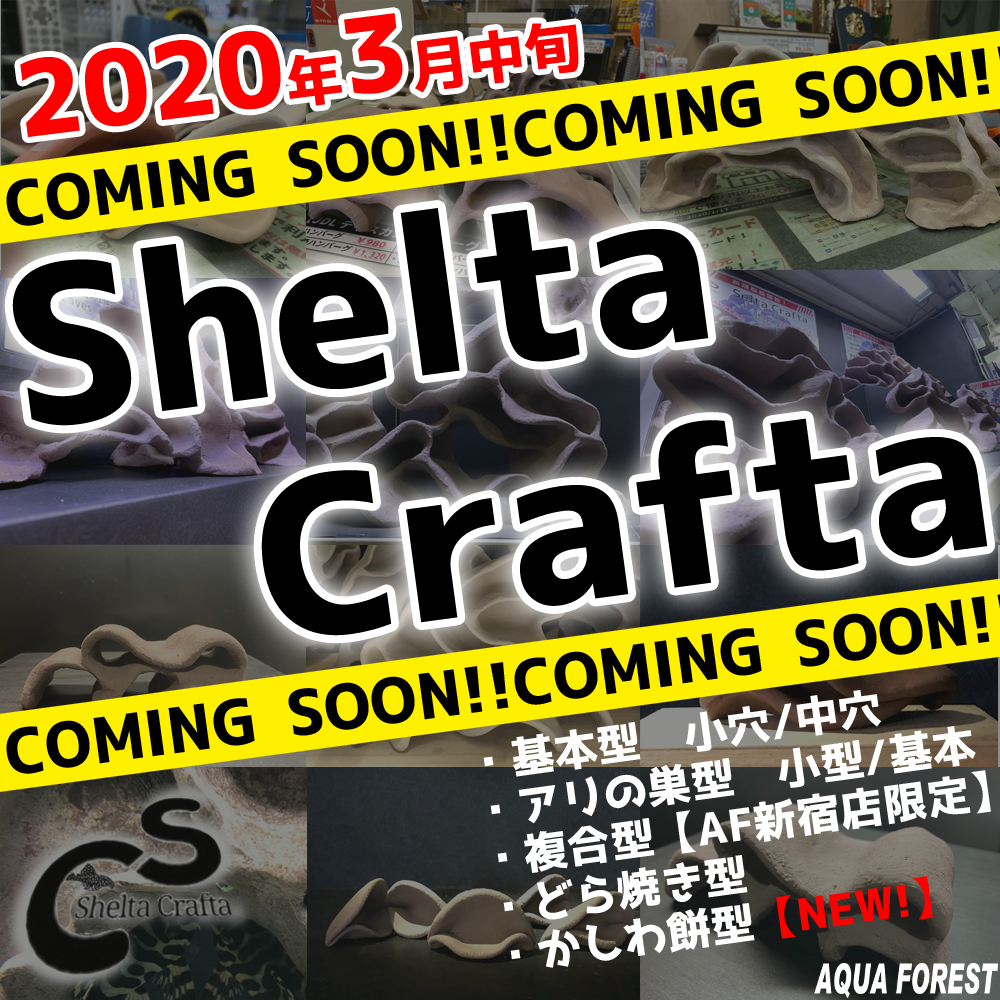 【新宿店】Shelta Crafta
