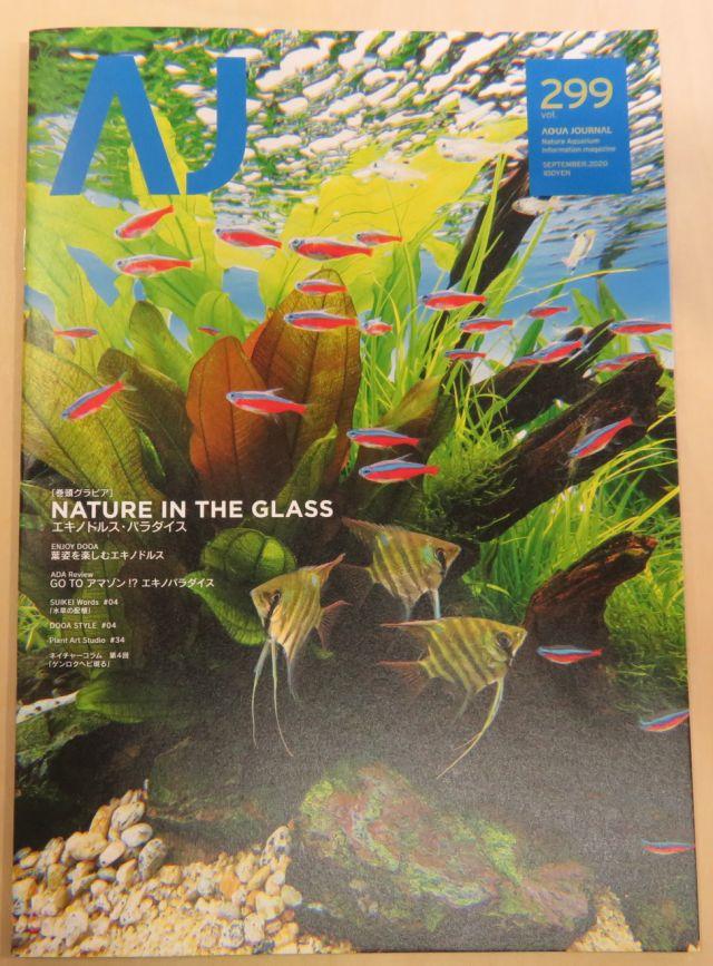 【新宿店】月刊誌アクアライフ、アクアジャーナル入荷しました。