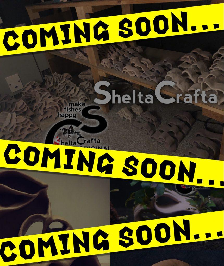 【新宿店】Sheltacrafta 2021年第一弾入荷情報!!