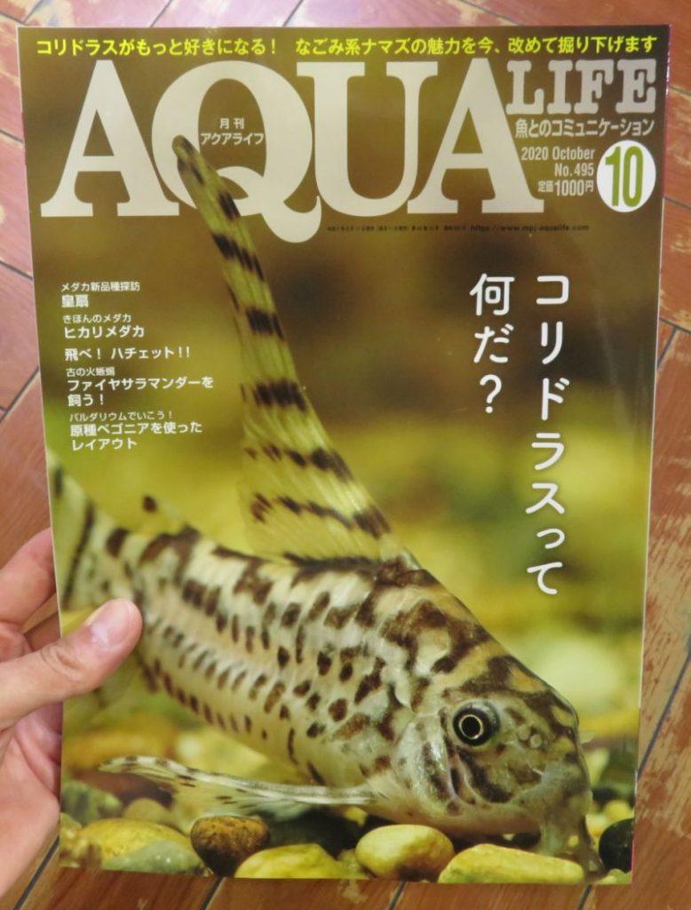 【新宿店】月刊誌アクアライフ