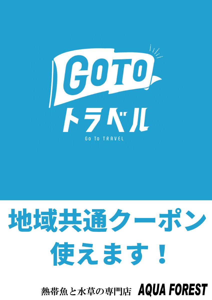 GoToトラベル地域共通クーポン使えます!