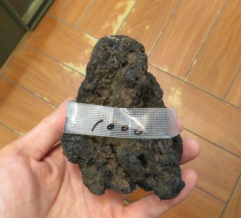 【新宿店】溶岩石入荷しました!