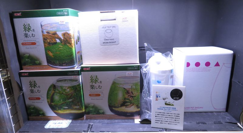 【新宿店】ボトルアクアリウム用品のご紹介