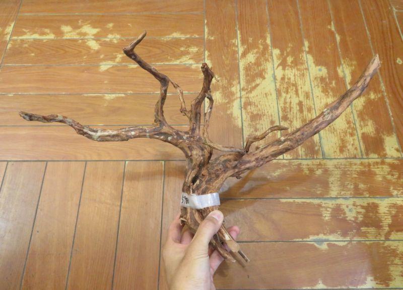 【新宿店】枝流木 大きめ入荷しております