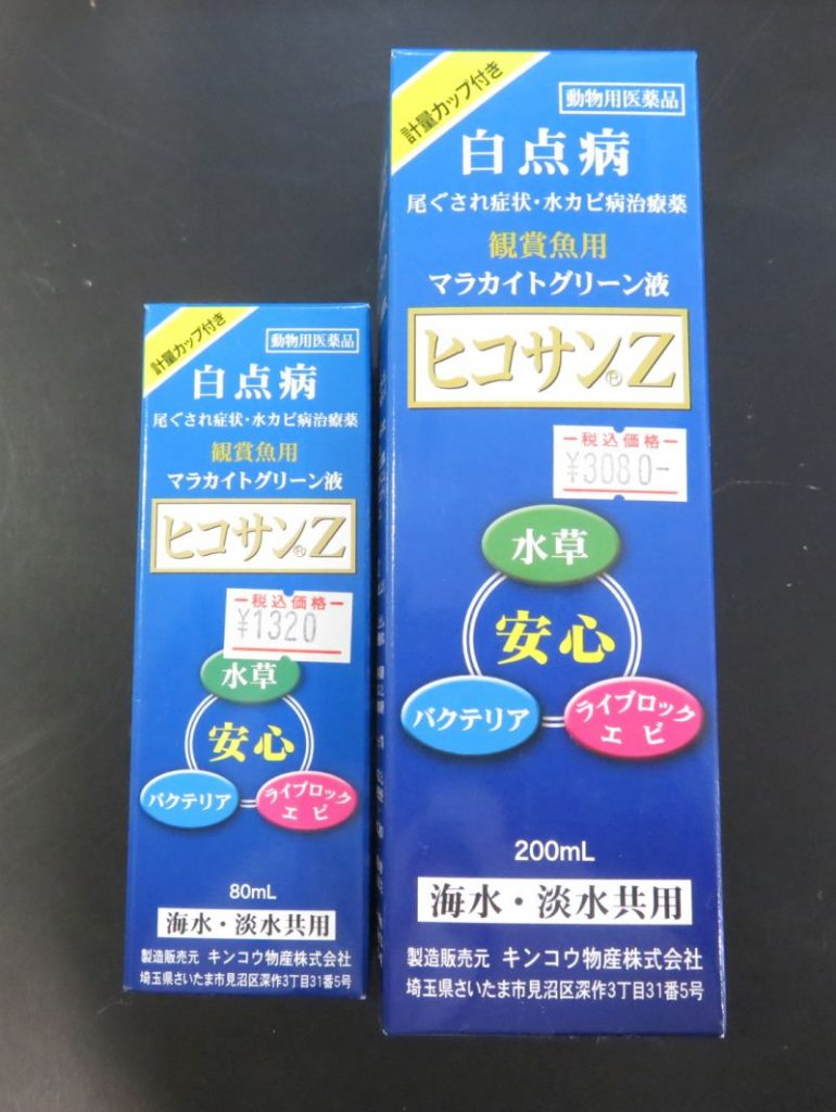 【新宿店】水温低下による白点病にご注意ください