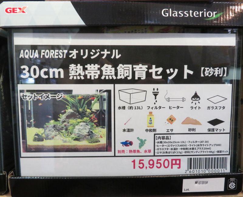 【新宿店】30センチ水槽 初心者向きセットあります