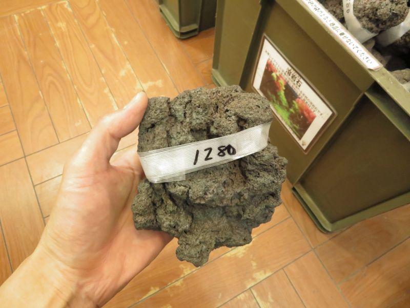 【新宿店】国産溶岩石入荷しました