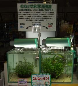 【新宿店】水草を元気に育てるために二酸化炭素を添加しましょう!