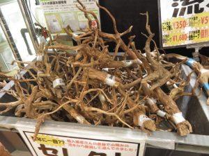 【新宿店】細枝流木入荷しました!