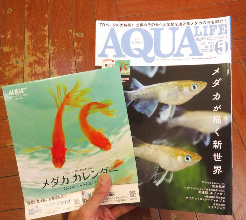 【新宿店】月刊誌アクアライフ入荷しました!