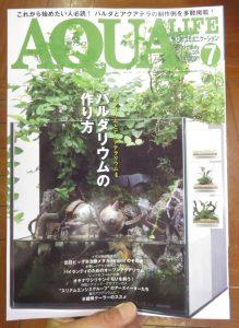 【新宿店】月刊誌アクアライフはパルダリウムの作り方特集です!