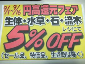 円高還元フェア開催中!