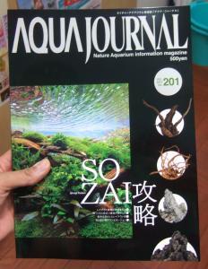 各月刊誌入荷いたしました