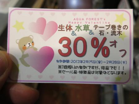 バレンタインイベントスタート&ADA10%OFF!!