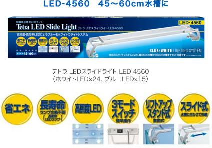 led4560_01.jpg
