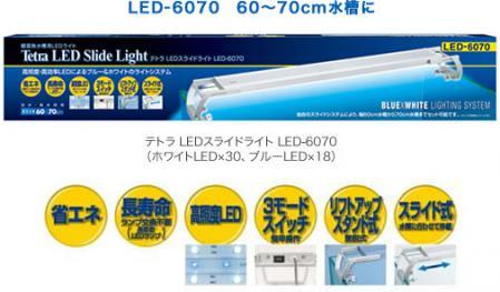 led6070_01.jpg